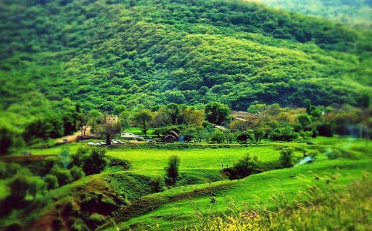 طبیعت زیبای روستای افجه
