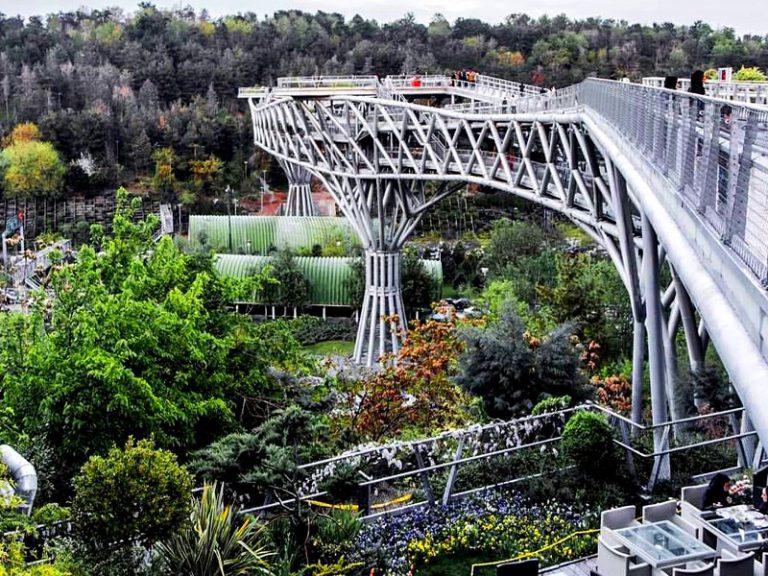 پل طبیعت از بالا