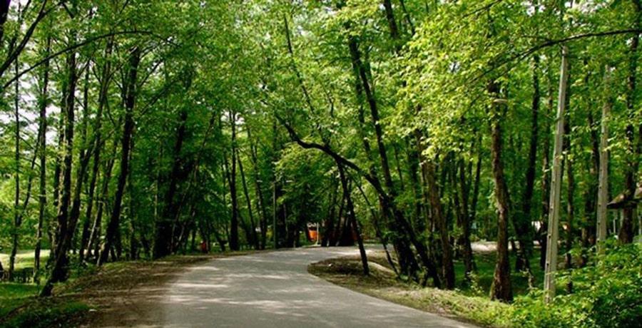 پارک جنگلی غزال